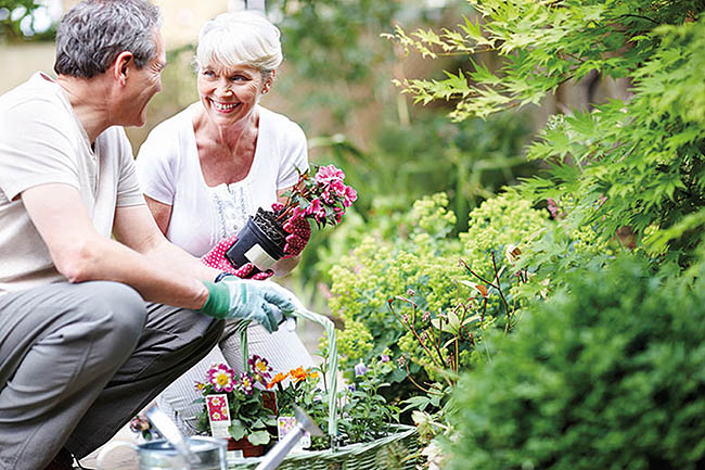 Maplewood Retirement Community